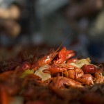 Dallas Coworking Spot CoHabitat to Host 4th Annual Crawfish Boil