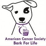 Bark for Life Raises Money for Cancer